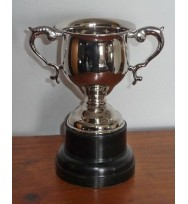 Sports Cup Nickel 8""