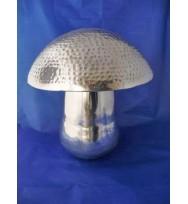 Mushroom Medium