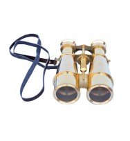Binoculars with leather carry cover