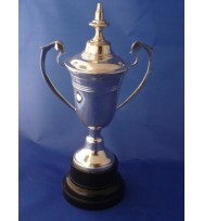 Sports Cup with Lid 11""