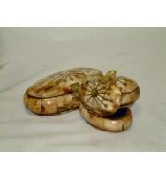 S/3 Oval Bone Box Brass Inlay